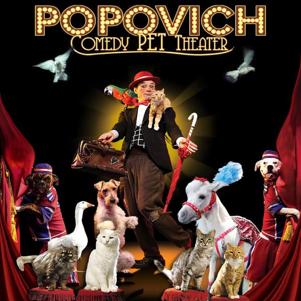 Popovich Comedy Pet Theater Discount Coupon Las Vegas