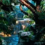 Tropical Rain Forest Mirage Hotel Las Vegas