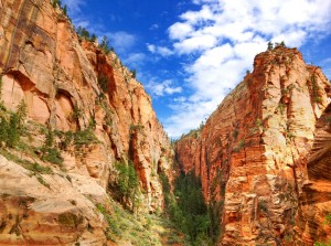 National Parks Tour Zion
