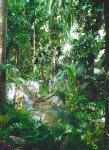 Mirage Las Vegas Tropical Rain Forest